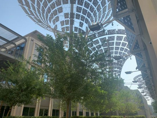 Expo 2020 inside look