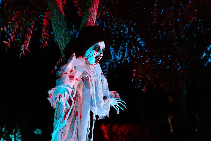 Fright Nights  (1)-1572068745758