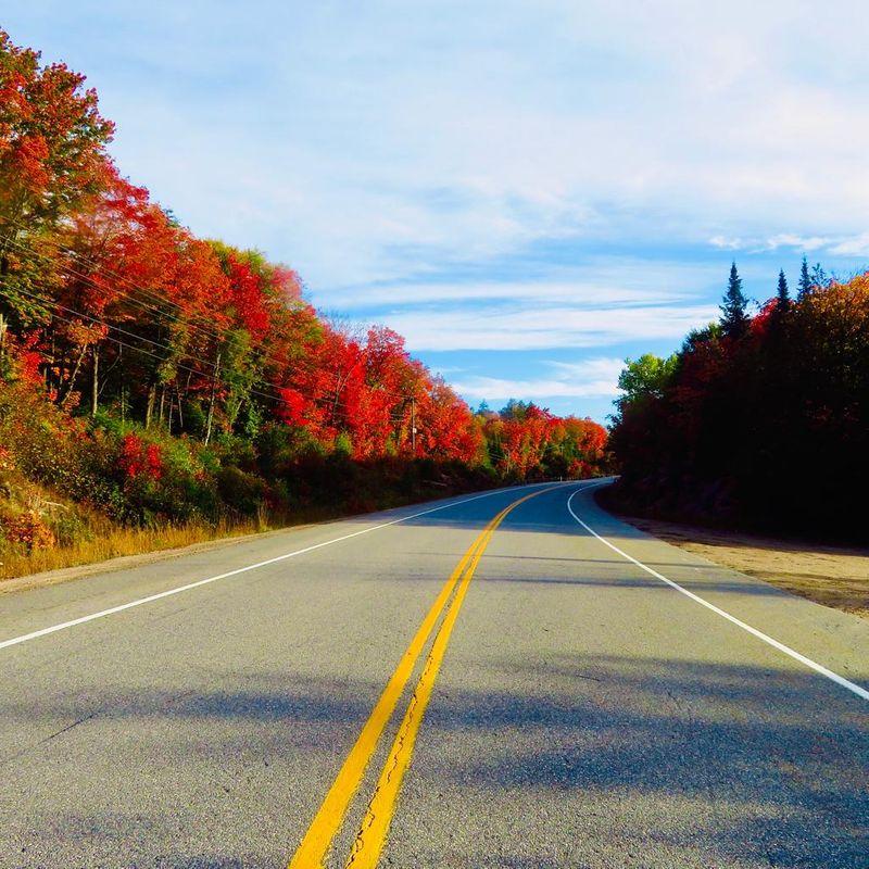 Algonquin Provincial Park, in Canada.