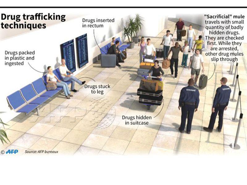 Drug mules graphic
