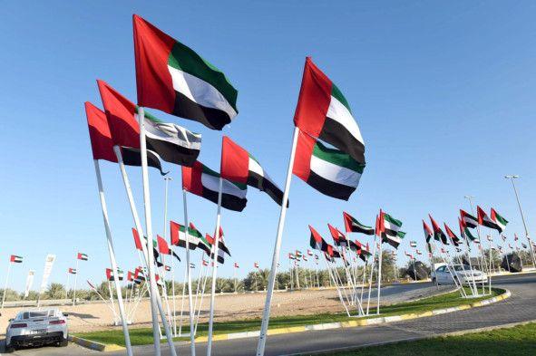 OPN UAE flag day-1572693004173