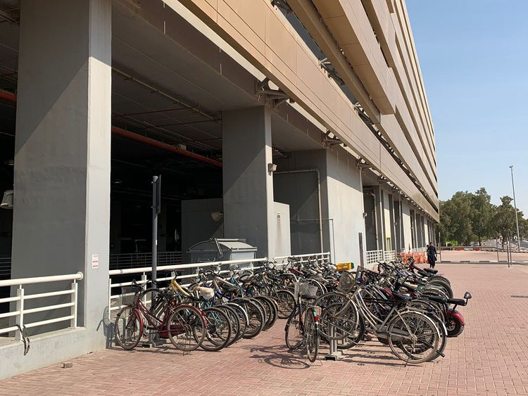 Bicycles at Rashidiya