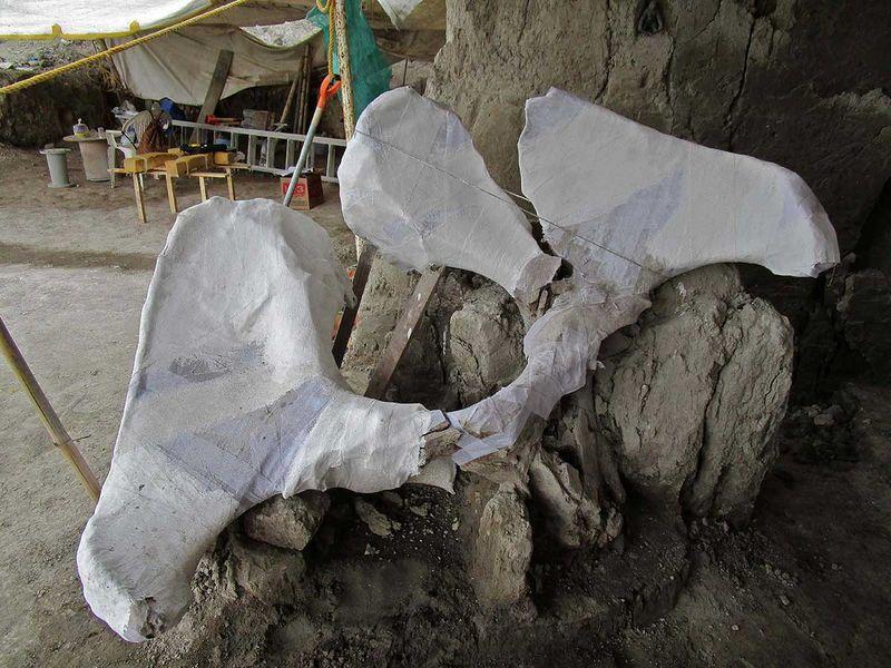 191107 mammoth pits