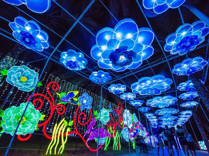 Top 8 photo spots at Dubai Garden Glow | Going-out – Gulf News