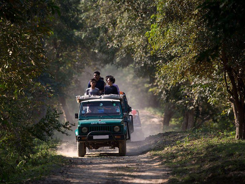 India_Wildlife_04686