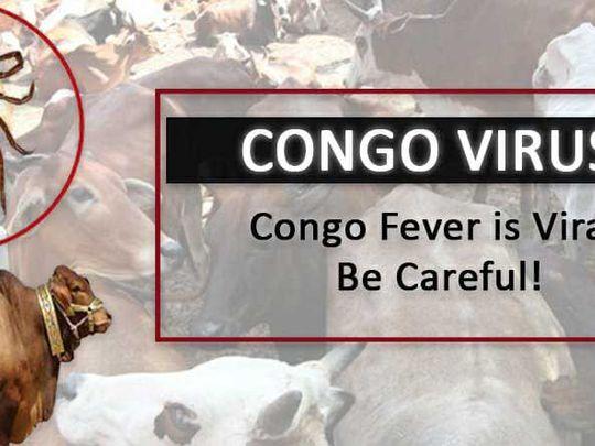 Congo virus