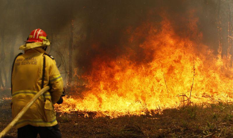 Copy of Australia_Wildfires_03958.jpg-dddaa~1-1573460109266