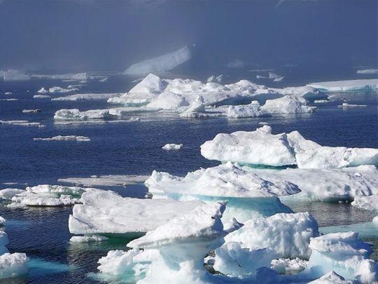 Melting Arctic sea ice linked to emergence of deadly virus