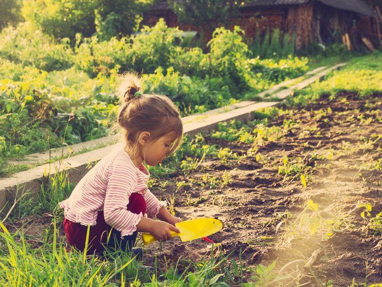 PW-191112_gardening with kids_shutterstock_234031096-1573568584711