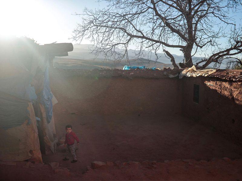 Morocco_Saffron_Harvest_09387