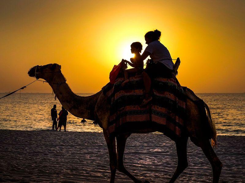 Children enjoy a camel ride at the Ajman beach