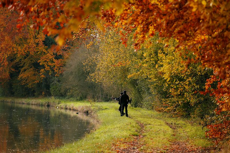 People fish in the canal as golden, green and rusty leaves are seen during the autumn in Thun-Leveque, France.