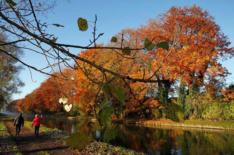 People walk along the canal as golden, green and rusty leaves colour the autumn in Thun-Leveque, France.