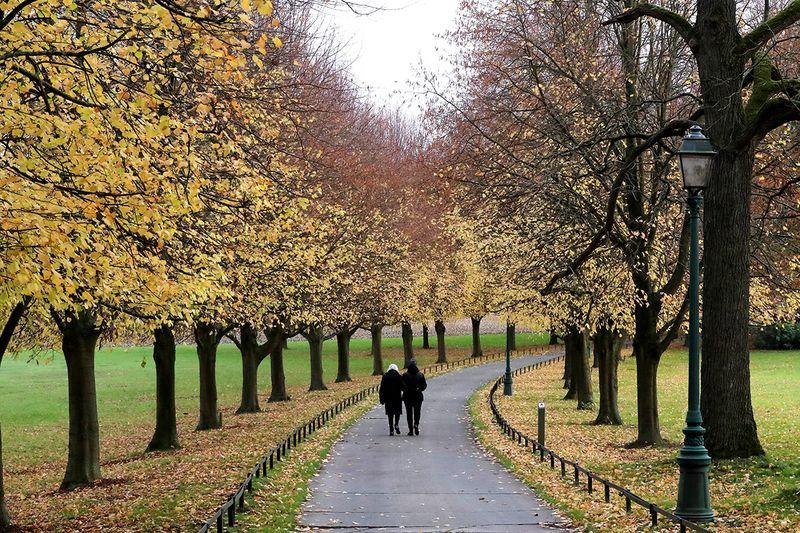 People walk in a park in Gaasbeek, Belgium.  REUTERS