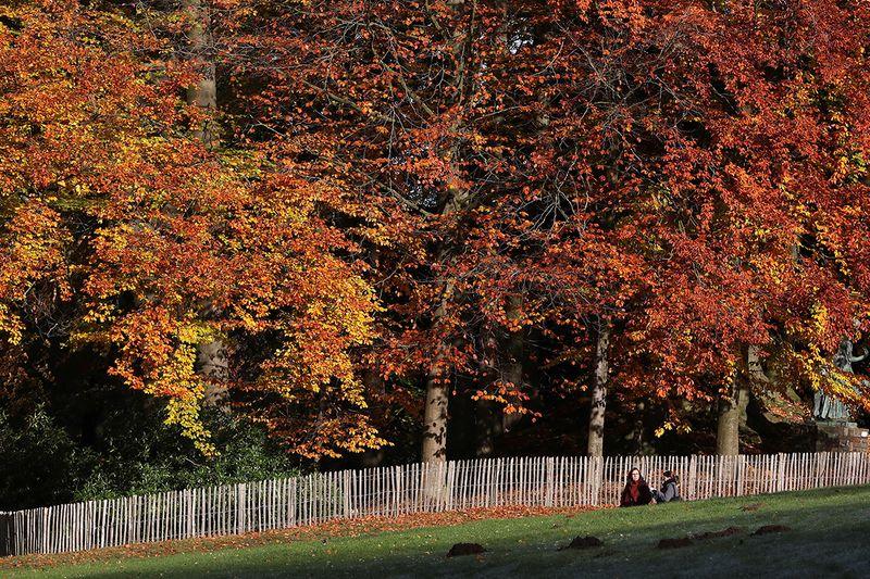 People walk in a park in Huizingen, Belgium.
