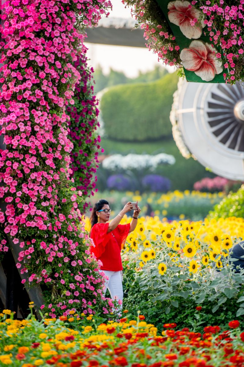FEAT 191105 Miracle Garden AKK-27-1574436134891