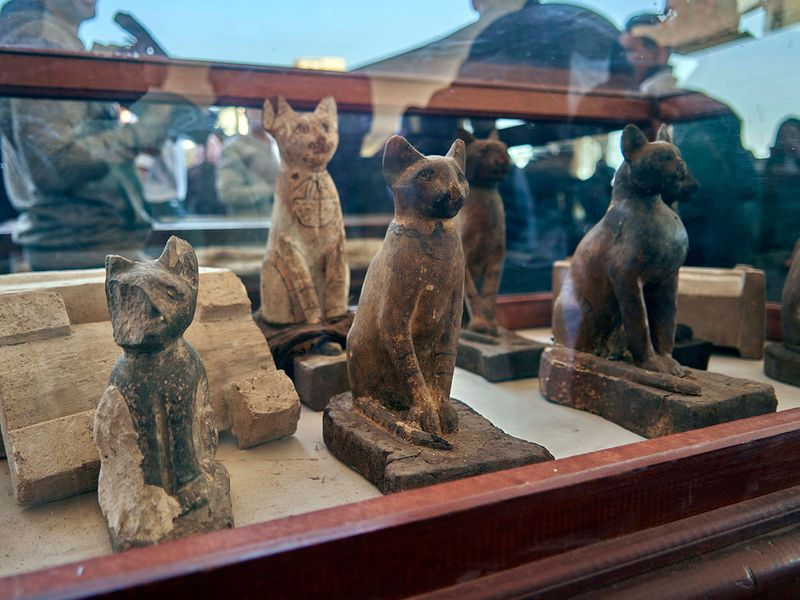 Lion cub mummies feature in huge ancient Egypt find