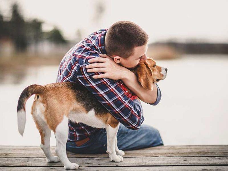 family-boy-dog