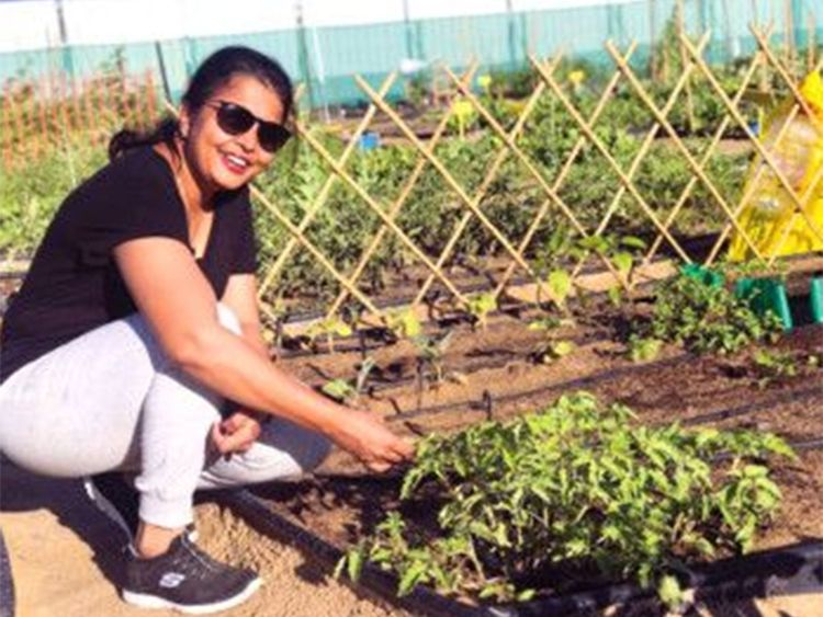 Anu Rajagolan and several other residents tend their plots from September to May