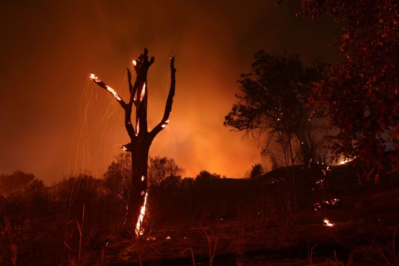 Copy of 2019-11-26T132803Z_1102567371_RC21JD919I6D_RTRMADP_3_CALIFORNIA-WILDFIRE-1574847470461