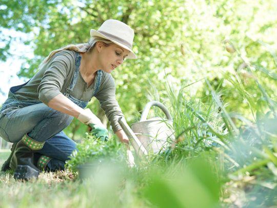 Off the cuff: I find gardening terrifying