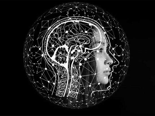 191202 brain networks