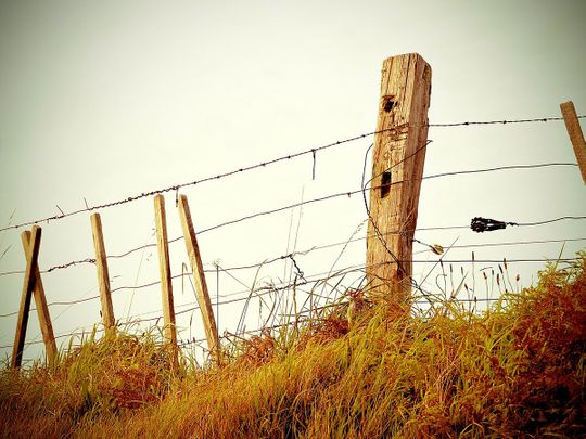 fence-336645_1920