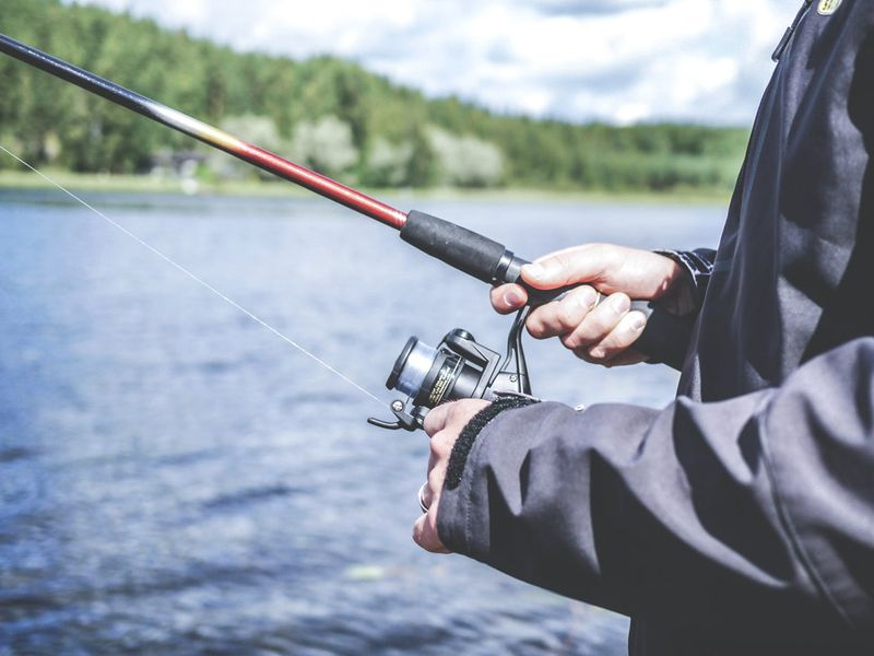 Want to go fishing in the UAE? Here's all you need to know. | Living-ask-us – Gulf News