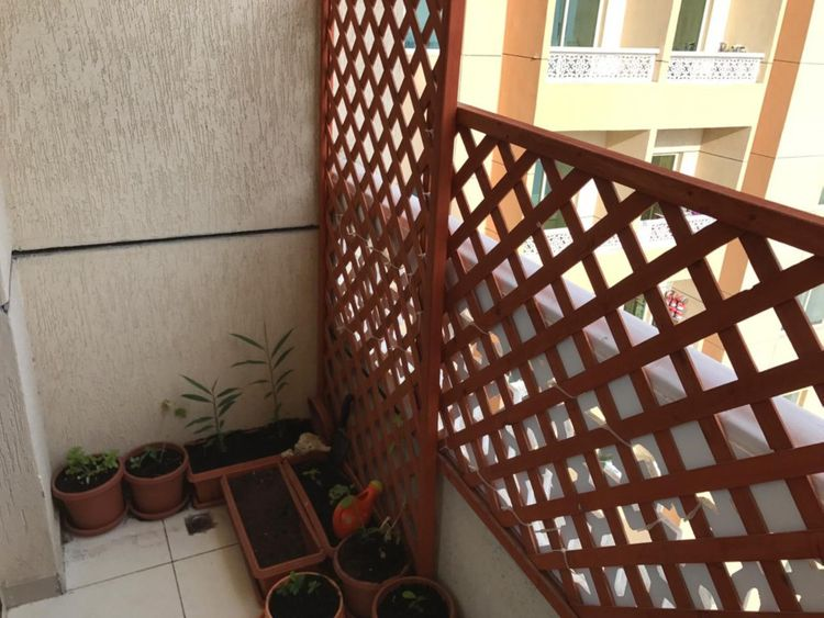 NAT 191211 how and why I secured my balcony in al nahda6-1576072611208