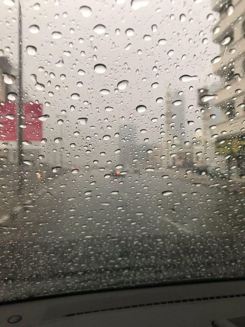 Rain gallery 20191211