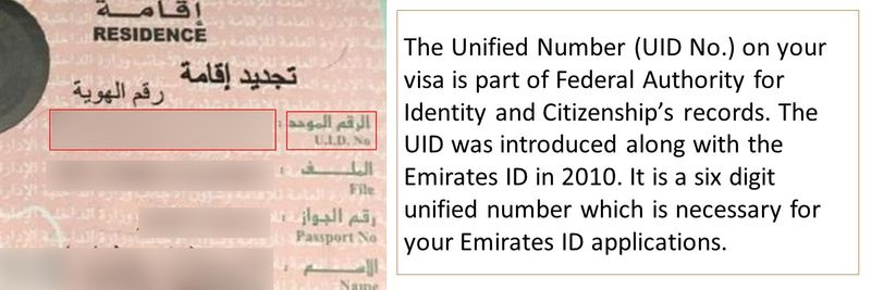UAE visa decoded Slide 2