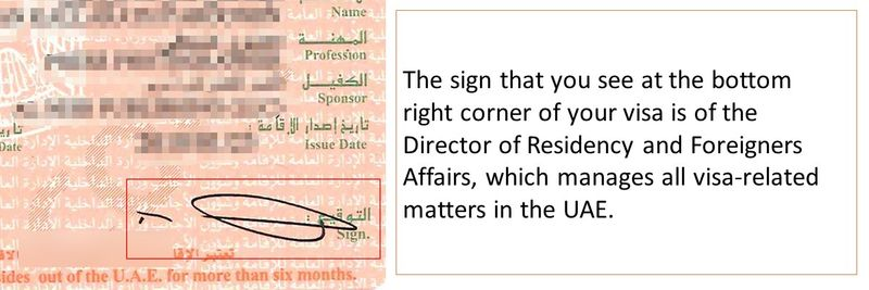 UAE visa decoded Slide10