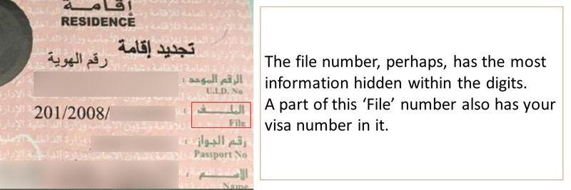 UAE visa decoded Slide3