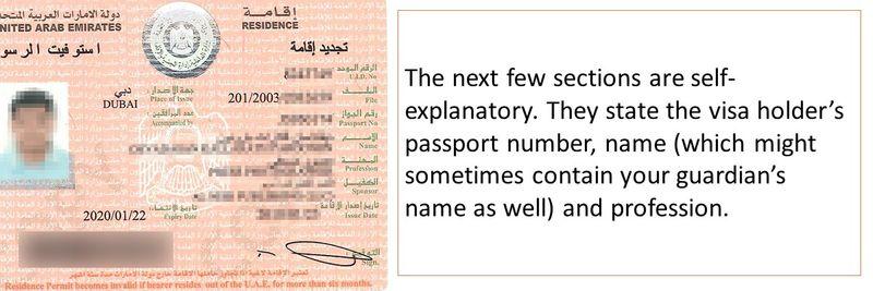 UAE visa decoded Slide8