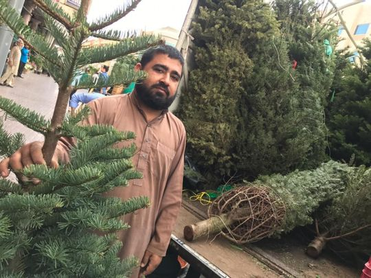NAT 191219 Christmas tree sellers in Satwa1-1576752558124
