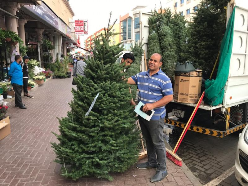 NAT 191219 Christmas tree sellers in Satwa4-1576752563576