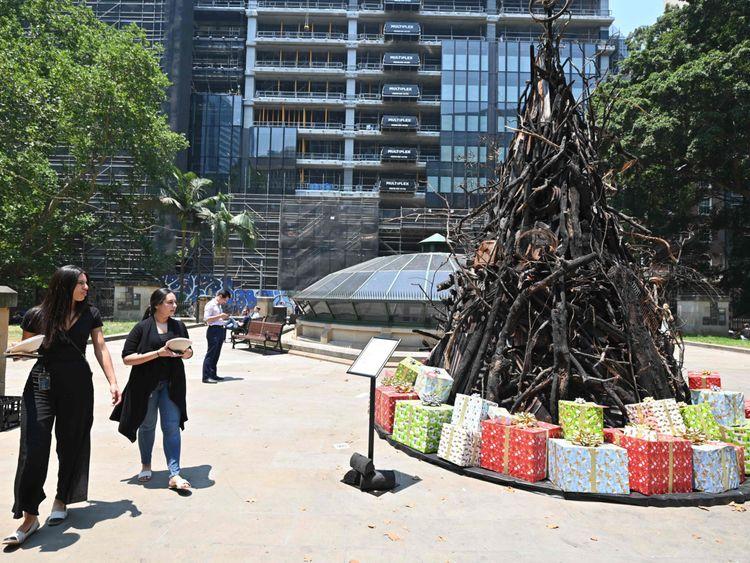 FTC Burnt Christmas tree113-1577013621203
