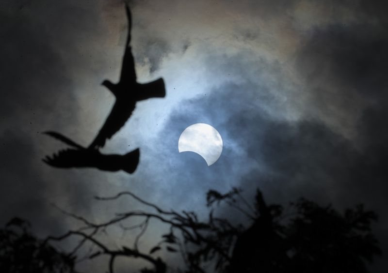 Copy of India_Solar_Eclipse_21420.jpg-5803b-1577351246441
