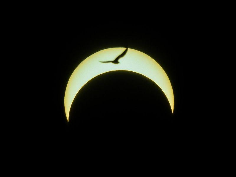 Solar eclipse in Dubai 2019