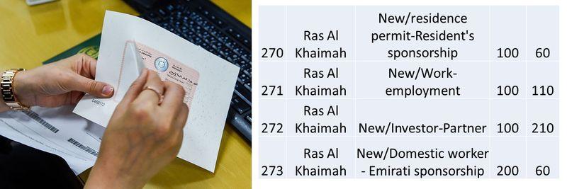 UAE residence visa fees 101