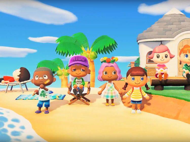 Animal Crossing New Horizons-1578119630308