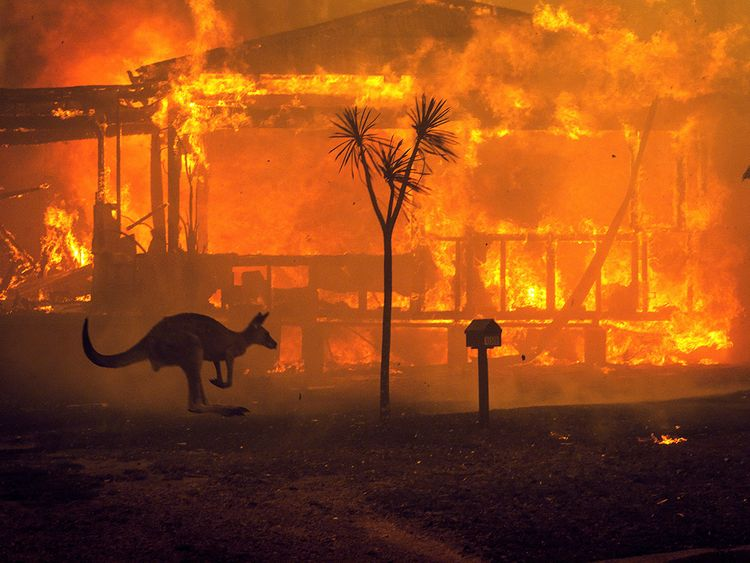 In Pictures Australia Fires The Size Of Manhattan News Photos