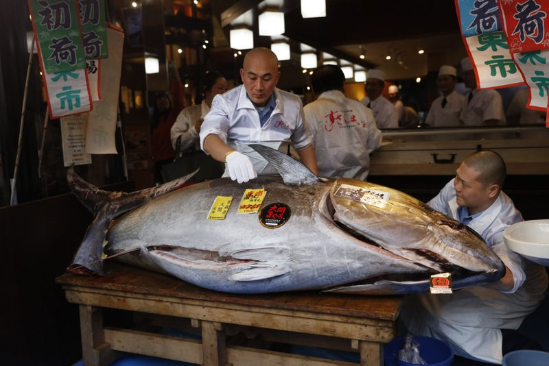 Copy of Japan_Tuna_Auction_87505.jpg-7be72-1578216776355