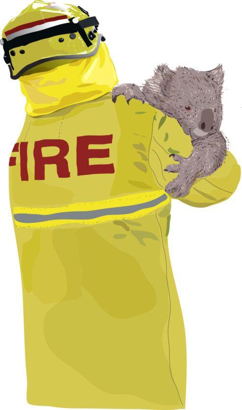 OP newsmaker firefighters koala-1578657214813