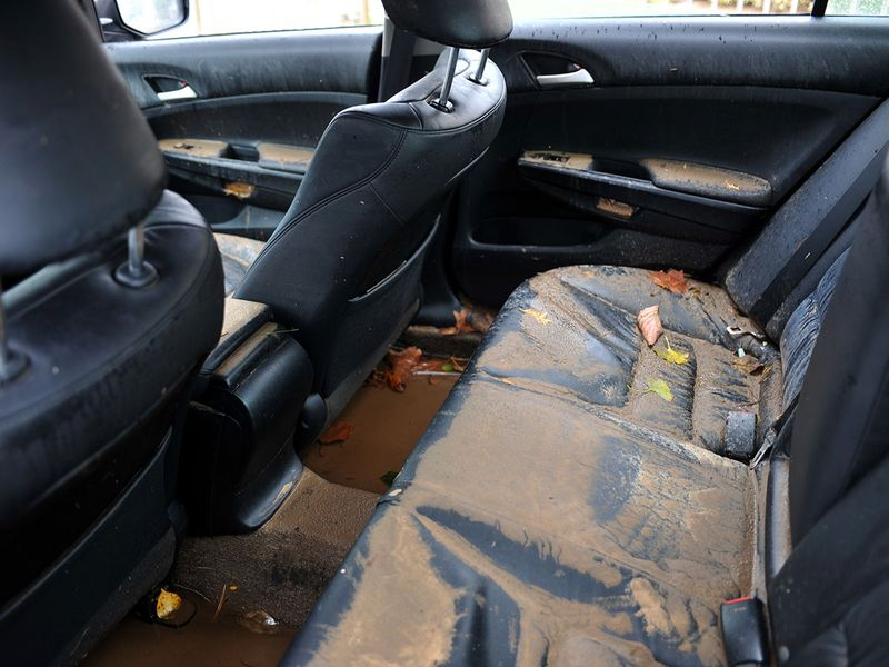 Auto Flood