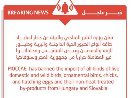 Bird ban