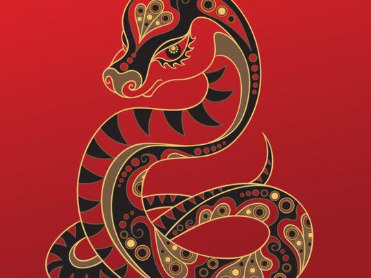 TAB SNAKE CHINESE-1579525022895