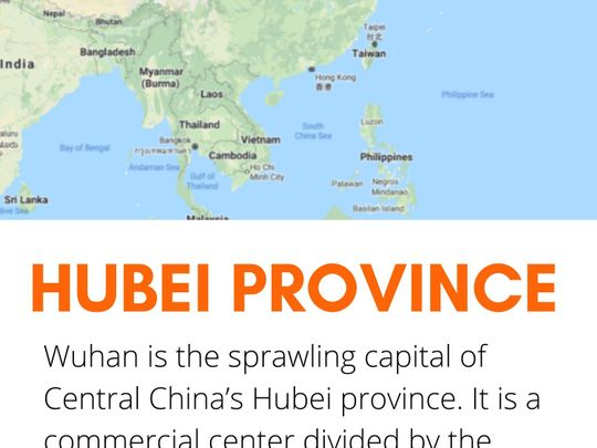 Coronavirus Wuhan Hubei province 01