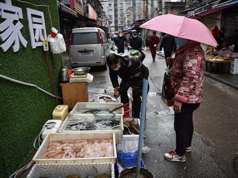 A masked vendor sells fish and turtles at a market in Wuhan where the coronavirus was discovered on January 24 2020.