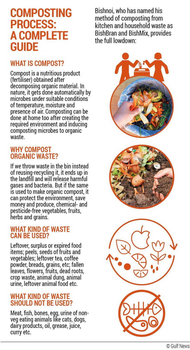 All You Need to Know About Compost